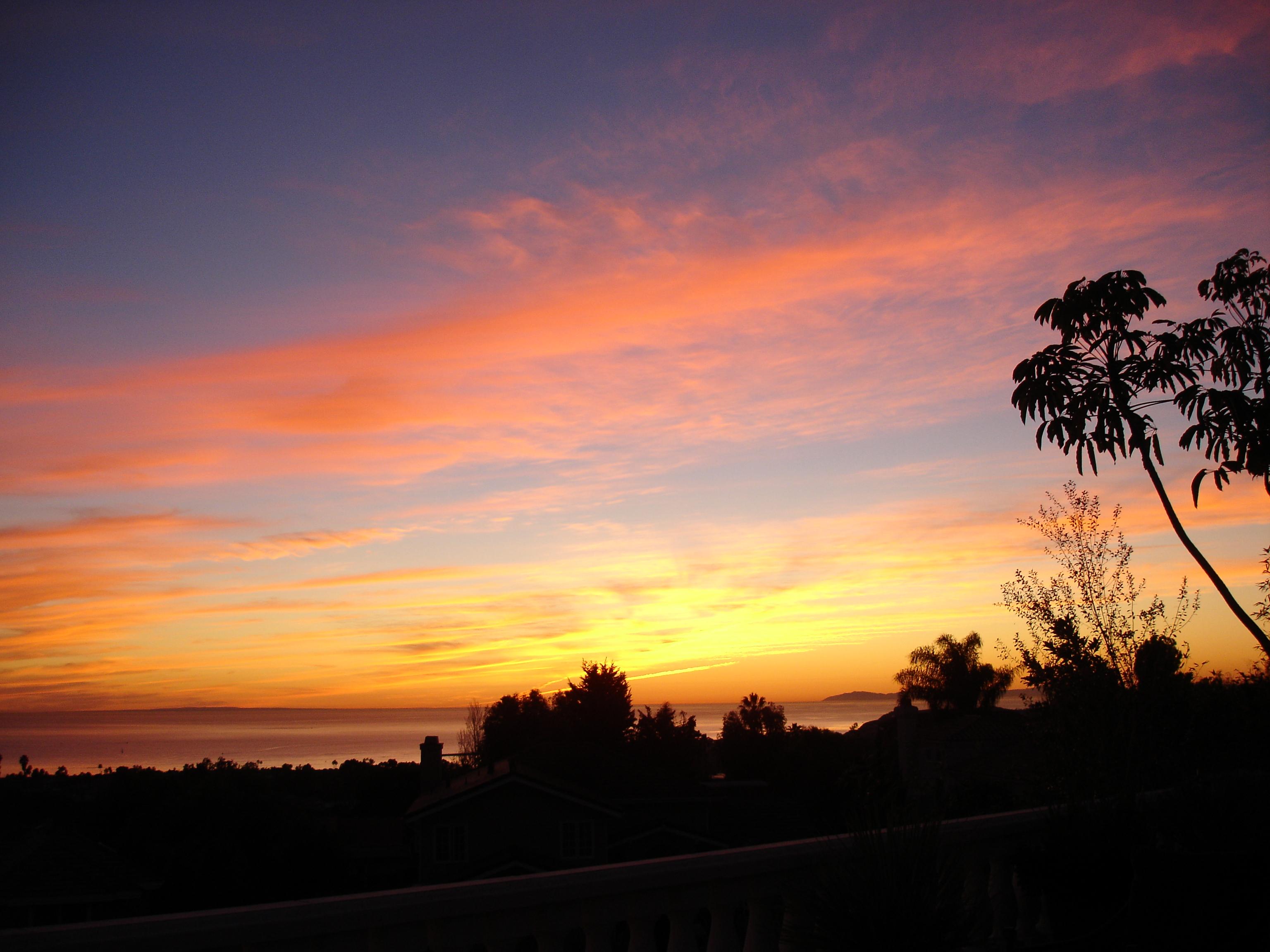 2009-01-backyard-sunsets-011
